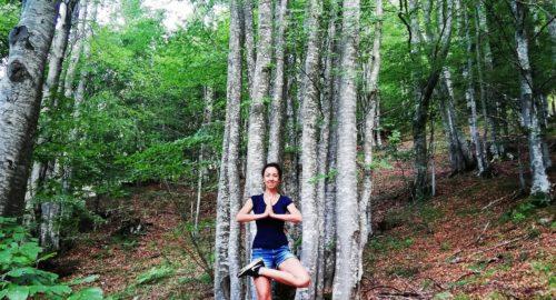 Yoga tra gli Alberi