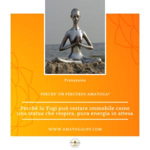 Yoga e metabolismo cellulare: salute ed energia sempre disponibili