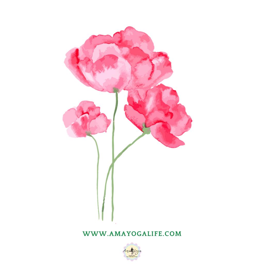 Amayoga: La primavera